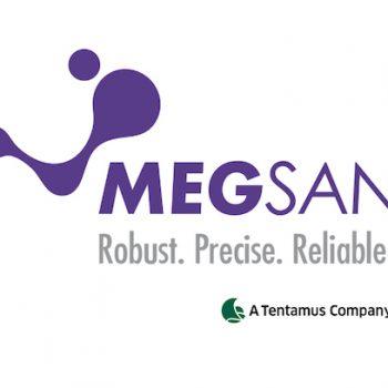 Megsan Labs Logo