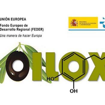 El Proyecto OILOX investiga las técnicas para mejorar la calidad de los AOVEs
